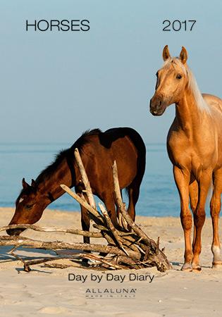 Cover of Allaluna horses 2017 small calendar