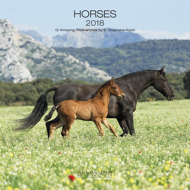 Horses calendar Allaluna