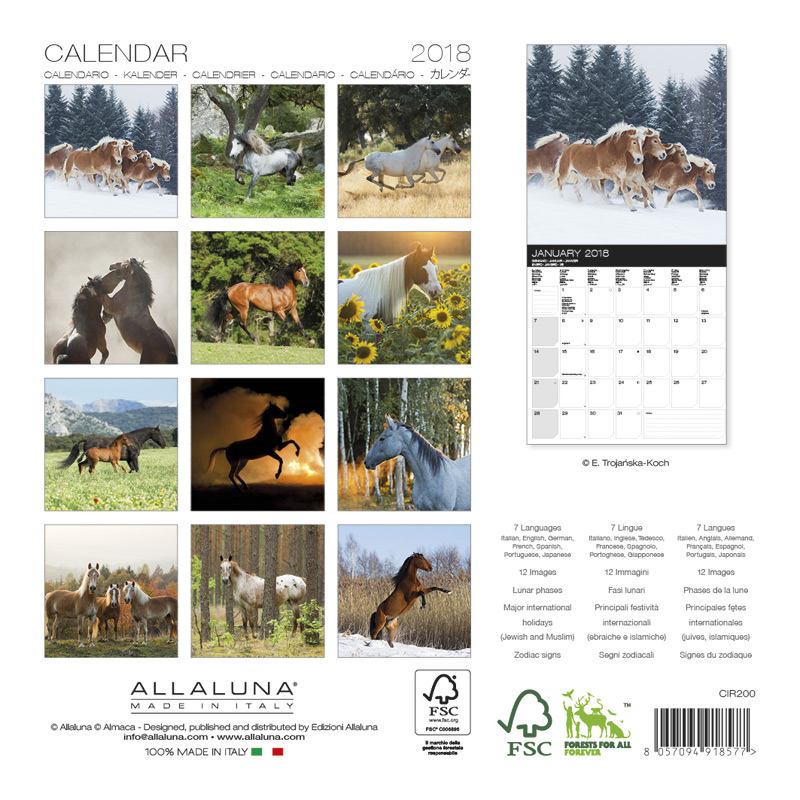 Kalendarz Konie Allaluna