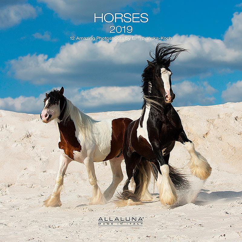 Okładka kalendarza z końmi