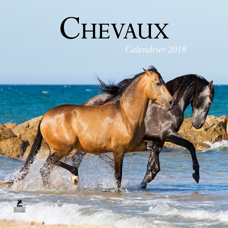 Horses calendar Editions Place des Victoires
