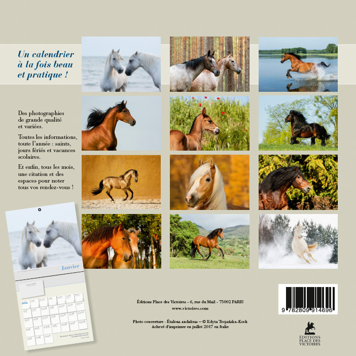 Kalendarz Konie Place des Victoires