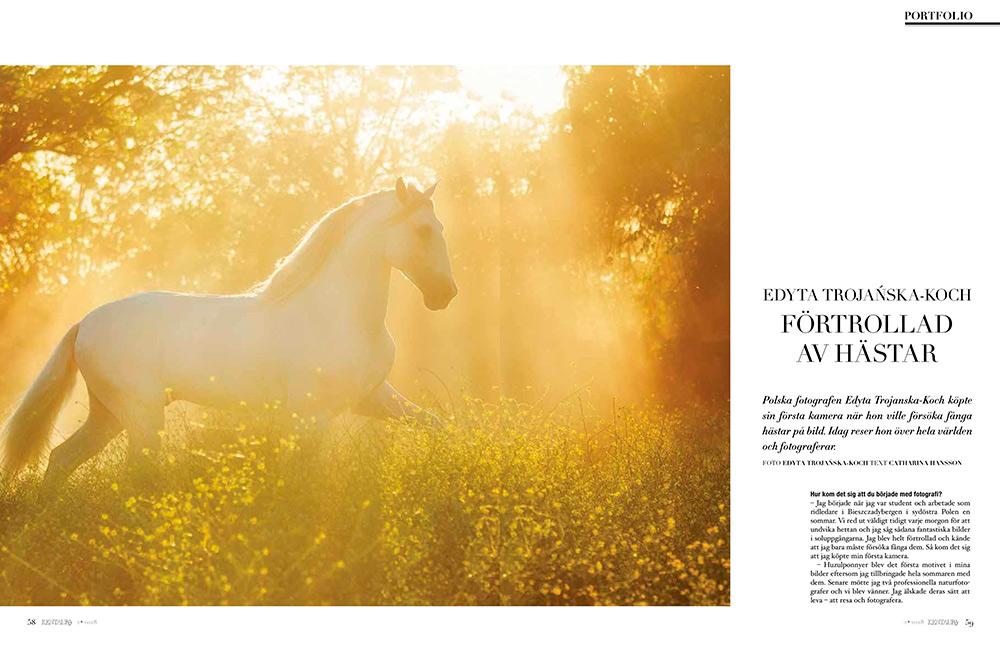 Interview in equestrian magazine Kentaur