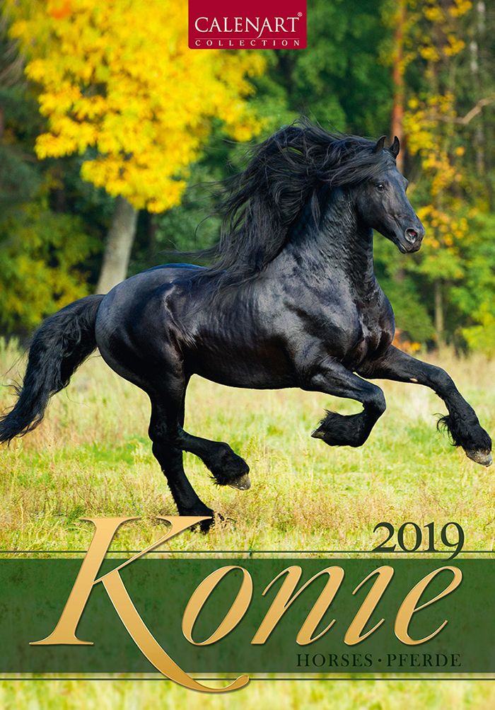 Okładka polskiego kalendarza z końmi