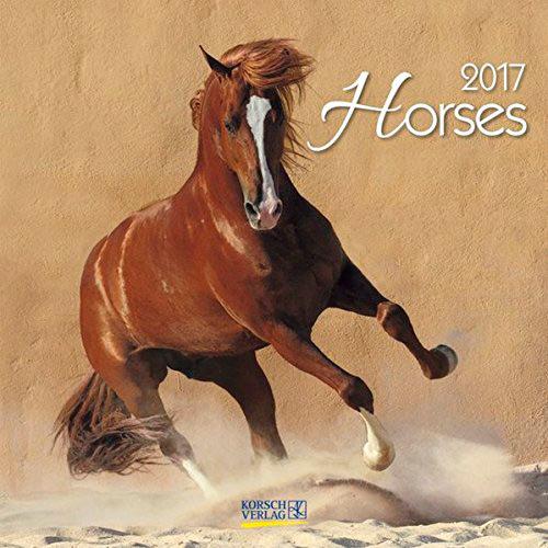 Horses calendar 2017 Korsch