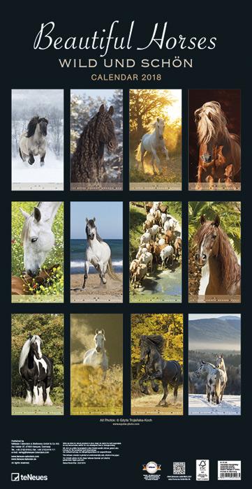 Horses calendar Teneus