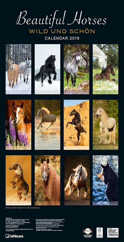 Okładka niemieckiego kalendarza z końmi