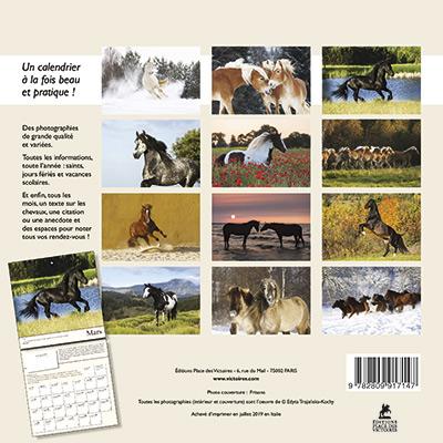 Kalendarz z końmi