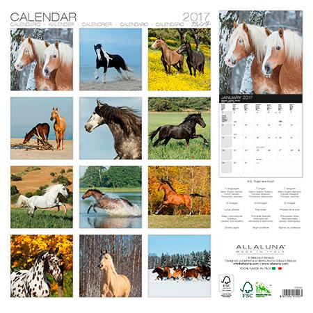 Back cover of Allaluna horses 2017 calendar