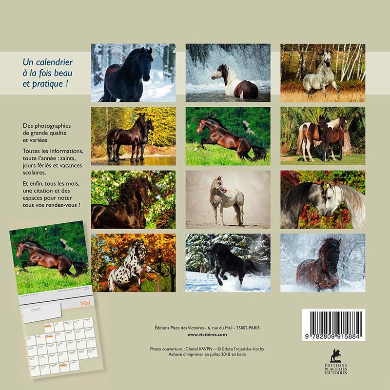 Okładka francuskiego kalendarza z końmi