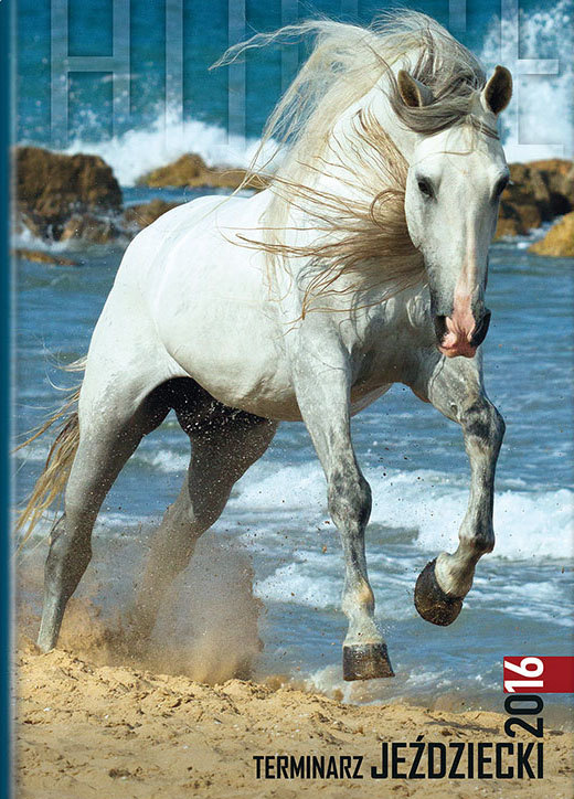 Cover of agenda 2016 with Andalusian stallion
