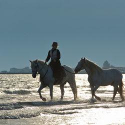 Amazonka konno z luzakiem na plaży w Camargue