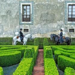 Portugalcy jeźdźcy w ogrodzie pałacu i winnicy na ogierach lusitano