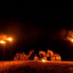 Ludzie konie i wielbłąd przy ognisku w Indiach