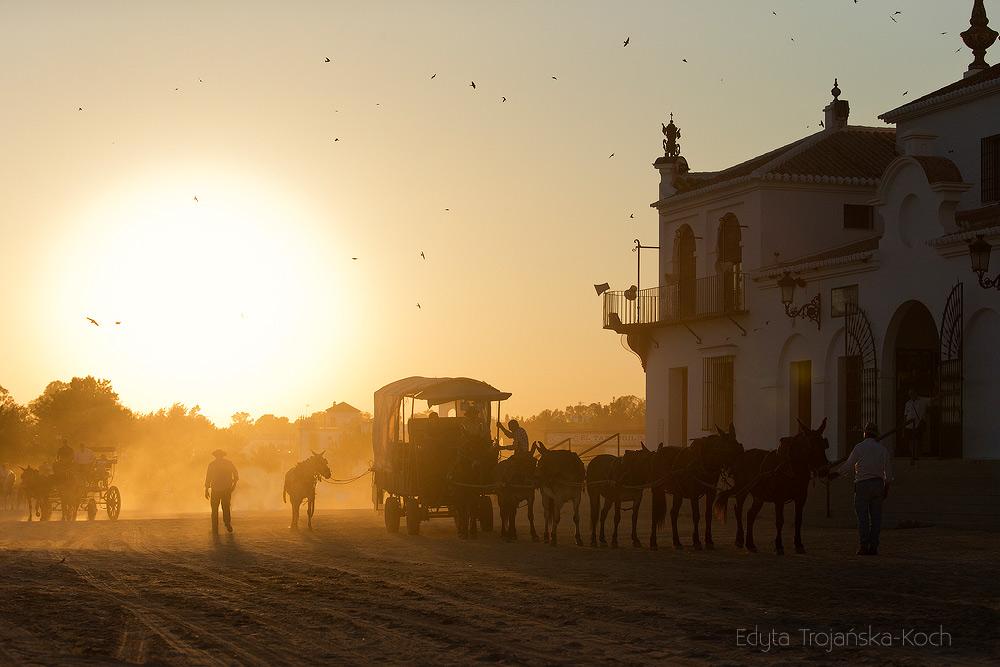 Zaprzęg muły Andaluzja Hiszpania wioska zachód słońca