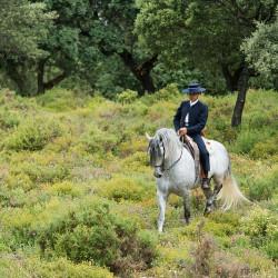 Jeździec doma vaquera na siwym andaluzie