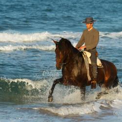 Jeździec doma vaquera kłusujący na andaluzie w morzu