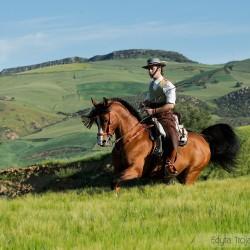 Jeździec doma vaquera galopujący na ogierze arabskim w górach