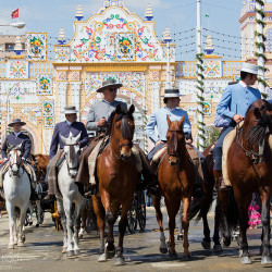 Jeźdzcy podczas Feria de Sevilla