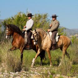 Jeźdźcy doma vaquera na koniach andaluzyjskich