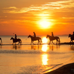 Jeźdźcy o wschodzie słońca nad Bałtykiem