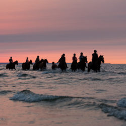 Jeźdźcy o zachodzie słońca nad Bałtykiem