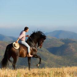 Jeździec galopujący na andaluzie w górach na oklep