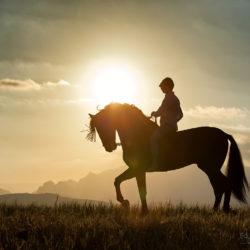 jeździec na andaluzie w górach na oklep o zachodzie słońca