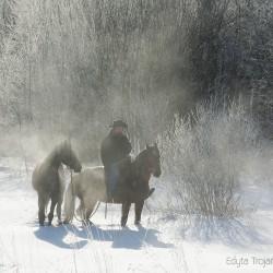 Jeździec z luzakiem zimą w górach w mglisty poranek