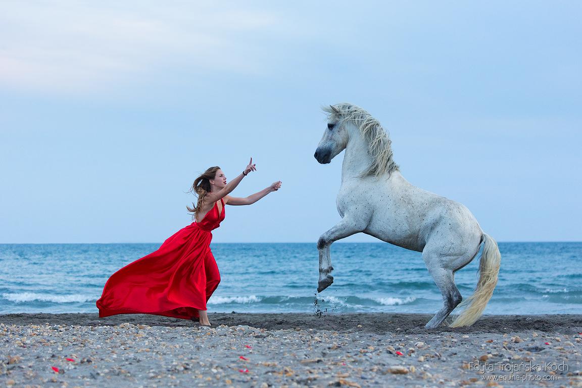 Dziewczyna w czerwonej sukni i koń nad morzem w Camargue
