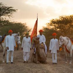 Hindusi z końmi i wielbłądem o zachodzie słońca