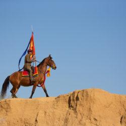 Jeździec z flagą na koniu Marwari w Indiach