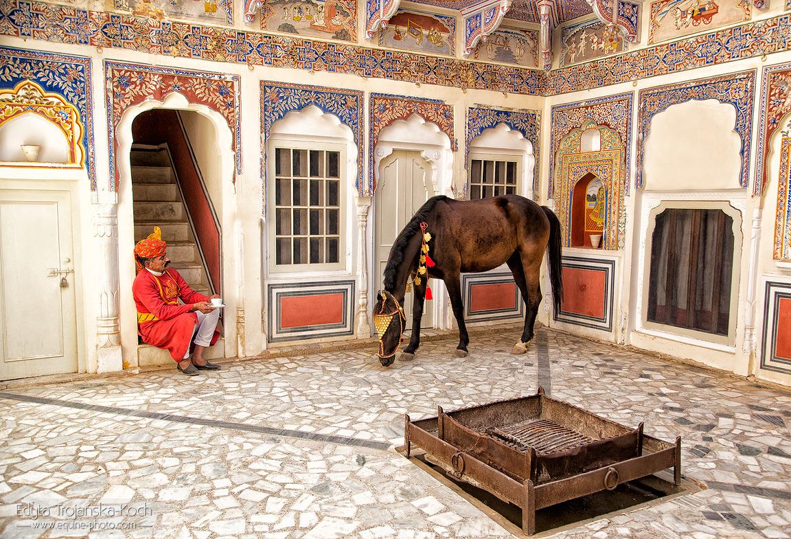 Hindus z koniem Marwari na dziedzińcu zamku