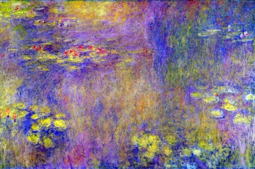 Obraz Moneta Lilie wodne