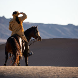 Berber ridding stallion in the desert