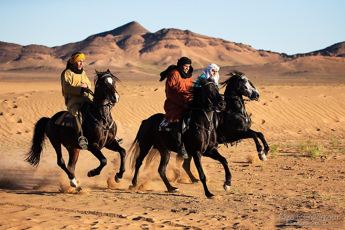 Jeźdźcy berberyjscy galopujący po pustyni
