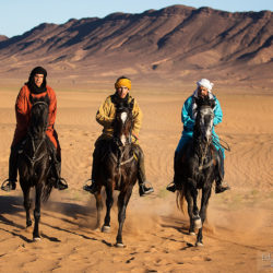 Jeźdźcy berberyjscy galopujący po wydmach